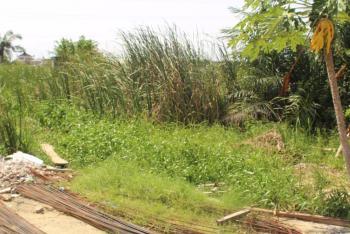 Prime 10,000sqm Land, Alma Beach Estate, Behind Meadow Hall School, Ikate Elegushi, Lekki, Lagos, Residential Land for Sale
