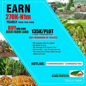 Plot of Farmland ,earn Big From Farming, Ogere, Abule Ojo, Ikenne, Ogun, Mixed-use Land for Sale