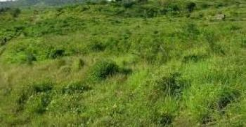 Lands, Refinery Road, Eleme, Rivers, Mixed-use Land for Sale