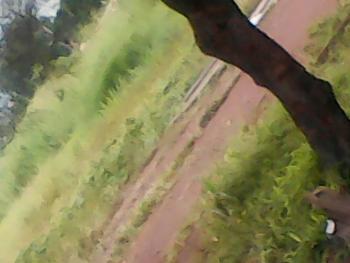 36 Plots of Land, Zik Avenue, Enugu, Enugu, Commercial Land for Sale