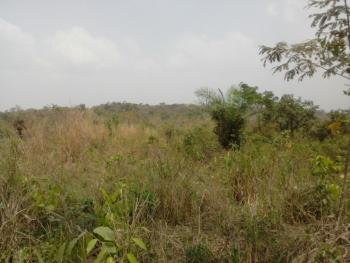Acres of Farm Lands for Sale in Owode Egba Ogun State, Obafemi Owode, Ogun, Mixed-use Land for Sale