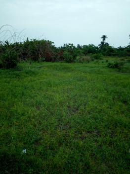 2500sqm Land, Palmgrove Estate, Palmgrove, Ilupeju, Lagos, Residential Land Joint Venture