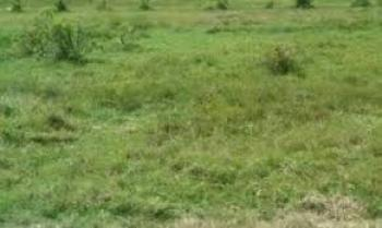 Distress Sale of 2060sqm of Land (run Down Structure on It), Bourdillon Road, Ikoyi, Lagos, Residential Land for Sale