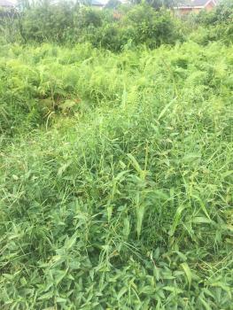 1037sqm (corner Piece) Land, Pinnock Beach Estate, Osapa, Lekki, Lagos, Residential Land for Sale