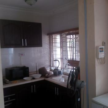 Fully Serviced Mini Flat  to Let in Ikeja Gra, Off Sobo Arobiodu, Ikeja Gra, Ikeja, Lagos, Mini Flat for Rent