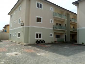 Palacious 3 Bedroom Flat, Igbo Efon, Idado, Lekki, Lagos, Flat for Rent