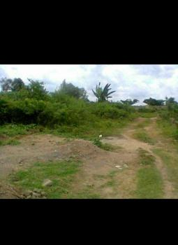 Land, Ibala Road, Saw Mill Alfa, Ilesa West, Osun, Residential Land for Sale