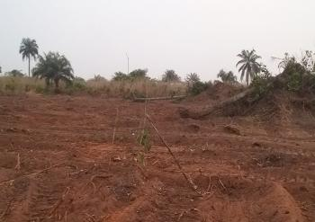 a Newly Acquired Estate, Ogbaku, Orogwe Local Government Imo State Off Onitsha -owerri Road Imo State., Owerri, Imo, Mixed-use Land for Sale