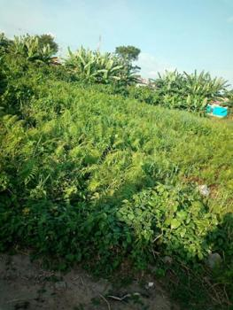 a Prime Fenced Land on 50 Acres, Close to Youth Centre Rccg, Along Lagos Ibadan Expressway, Mowe Ofada, Ogun, Land for Sale