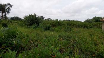 Full Plot of Land, Fagbile Phase 4, Under Isheri-oshun Area, Ejigbo, Lagos, Residential Land for Sale