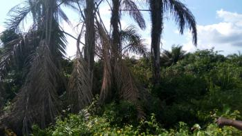 6 Plots of Land, Ilamija Village, Facing The Expressway, Along Lekki-epe Expressway, Epe, Lagos, Mixed-use Land for Sale
