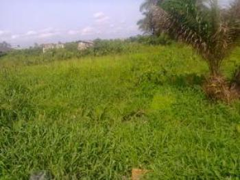 Lands, Ifite, Awka, Anambra, Residential Land for Sale