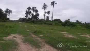 Christmas Promo!! Buy 5 Plots, Get 1 Free and Christmas Goodies...  Join The Train Today!, Located  at Idasho, 2 Minutes Drive From La Campagne Tropicana and 5 Minutes Drive From Dangote Refinery, Akodo Ise, Ibeju Lekki, Lagos, Residential Land for Sale