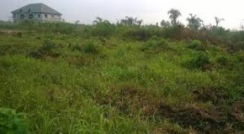 Half Acre of Land, Close to Ogor Technical College, Ogor, Ughelli North, Delta, Mixed-use Land for Sale