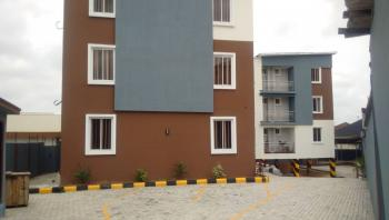 Be The Lucky Owner of a Newly Built 3 Bedroom + Bq Super Luxury Apartment, Ajao Estate, Anthony, Maryland, Lagos, Block of Flats for Sale