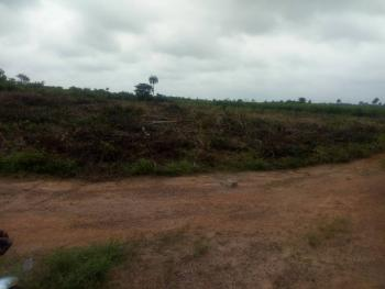 130 Acres of Land, Igbola Area, Epe, Lagos, Mixed-use Land for Sale