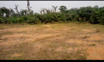 Land, Gaun, Before Mfm Camp, Around Makogi, Lagos-ibadan Exp. Way, Magboro, Ogun, Mixed-use Land for Sale