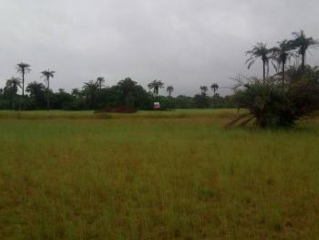 Gazetted Land, Hopewell Park Estate, 5 Minutes From Dangote Refinery, Ogogoro, Ibeju Lekki, Lagos, Land for Sale