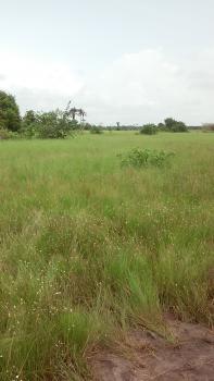 Close to Road, Bare Land, Akodo Ise, Ibeju Lekki, Lagos, Residential Land for Sale