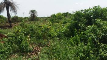 Buy Cheap Authentic Land with Good Documents, Ilara By St Augustine University, Epe, Lagos, Mixed-use Land for Sale