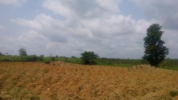 Parcel of Land 136 Hectares, Government College Road, Keffi, Nasarawa, Mixed-use Land for Sale