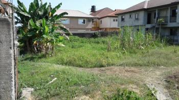 1680 Sqm of Land  on a Paved Road, Not Far Inside, Ideal for Church Workshop and a Lot More, Before Chevron, Opp Agungi, Ologolo, Lekki, Lagos, Mixed-use Land for Rent