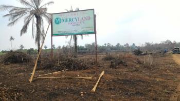 Mercyland Farm Estate, Moloko Asipa, Ashero Via Siun, Off Sagamu Abeokuta Expressway, Obafemi Owode, Ogun, Commercial Land for Sale