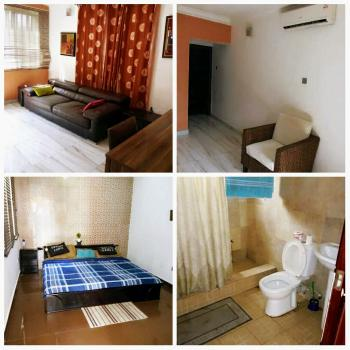 Luxury Mini Flat (1 One Bedroom Flat) with Garden and Rooftop Lounge, Ikate Elegushi, Lekki, Lagos, Mini Flat for Rent