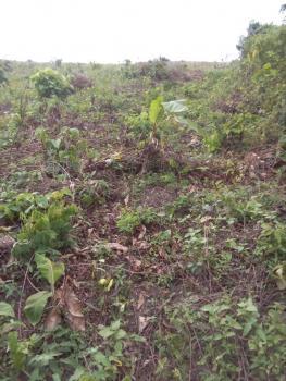 70 Acres of Land, Lagos Abeokuta  Expressway Awowo Bus Stop (kuta )opposite Ogun State Modern Farm, Obafemi Owode, Ogun, Mixed-use Land for Sale