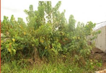 Land Measuring 2.87 Hectares, Export Processing Zone, at Industrial Layout, Ikot Abasi, Akwa Ibom, Mixed-use Land for Sale