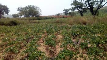 Customary Land of 600 Sqm, By Usman Dam, Dutse New Layout, Dutse, Abuja, Land for Sale