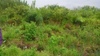Well Located 10 Hectares Beach Land for Sale(mgp), Okun Mopo,along Atican Beach Road, Lekki Phase 2, Lekki, Lagos, Mixed-use Land for Sale