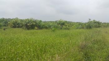 Vacant Plot/land, Monastery Road, Sangotedo, Ajah, Lagos, Residential Land for Sale