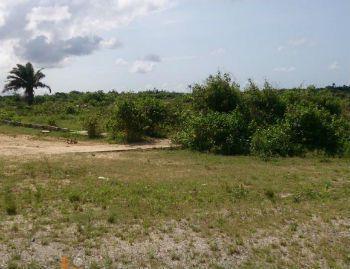 3 Hectares of Land, Sagamu Road, Beside Nestle, Ogijo, Sagamu, Ogun, Mixed-use Land for Sale