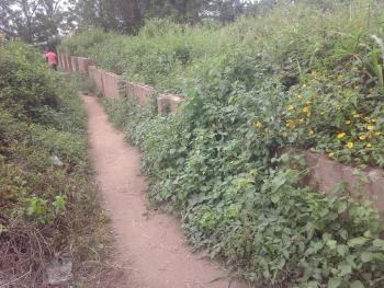 Fenced Plot of Land with Global Cofo, Agbofieti, Via Nihort - Jericho Gbekuba Road, Ido, Oyo, Residential Land for Sale
