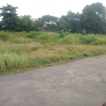 Urgent Large Land, Off Obafemi Awolowo Road, Utako, Abuja, Land for Sale