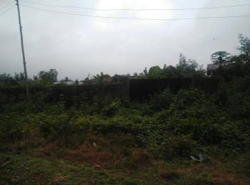 Land, Idoro-iwesi, Ijebu Ode, Ogun, Commercial Land for Sale