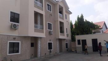 a 2 Bedrooms Serviced Apartment Fully Furnished, Wuse 2, Abuja, Flat for Rent