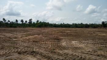 Royal Flourish Park, By Bogije, Eluju, Ibeju Lekki, Lagos, Land for Sale