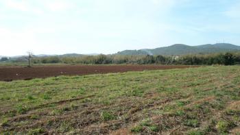 500 Acres, Evbowe Community, Uhunmwonde, Edo, Mixed-use Land for Sale