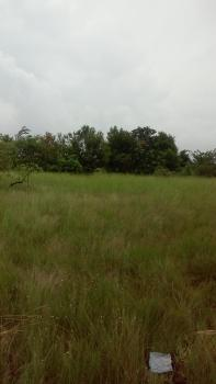 Land Sale, in Nigeria. 5 Min Drive From Dangote Refinery and Lekki Free Trade Zone, Still Selling Cheap + Buy 5 Get One Free., Akodo Ise, Ibeju Lekki, Lagos, Residential Land for Sale