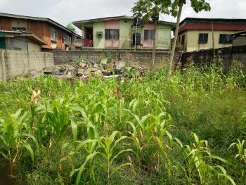 Land, Wole Cole, Ijesha, Surulere, Lagos, Commercial Land for Rent