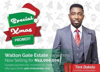 Walton Gate Estate, Sangotedo, Ajah, Lagos, Residential Land for Sale