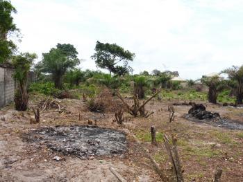 Mixed Use Virgin Land, Abraham Adesanya Estate, Ajah, Lagos, Mixed-use Land for Sale