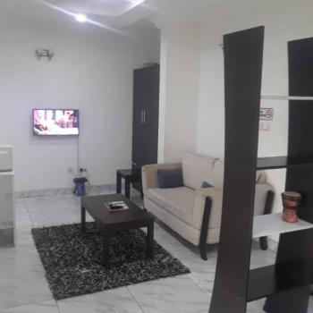 Tastfully Furnished and Serviced Studio Apartment in Chevron, Off Chevron Drive , Off The Alternative Route, Lekki, Lagos, Mini Flat Short Let