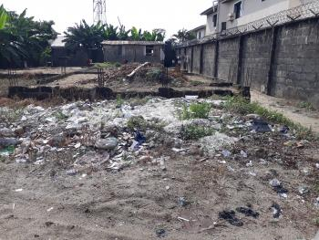 a Dry Full Plot of Land, Beside Peace Mass, Before Abraham Adesanya Roundabout, Lekki Epe Expressway, Graceland Estate, Ajah, Lagos, Mixed-use Land for Sale