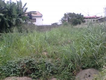 610 Sqm Land, Omole Phase 1, Ikeja, Lagos, Residential Land for Sale