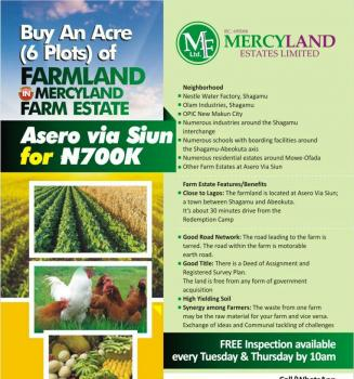 Mercyland Farmland, Siun, By Ashero (under Owode Ofada Lga of Ogun State). Approximately 30 Minutes From Rccg Redemption Camp, Car Park C, Sagamu, Ogun, Commercial Land for Sale