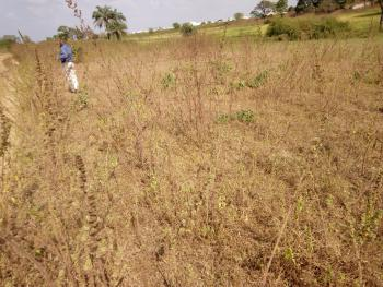 6 Standard Plots, Royal Valley Estate Extension, Ilorin West, Kwara, Mixed-use Land for Sale