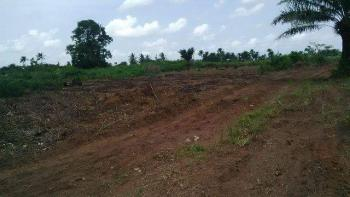 6 Plots of Land (100/50) Surveyed and Fenced, Within Awesome View Estate Agbara Alapoti, Agbara, Ogun, Mixed-use Land for Sale